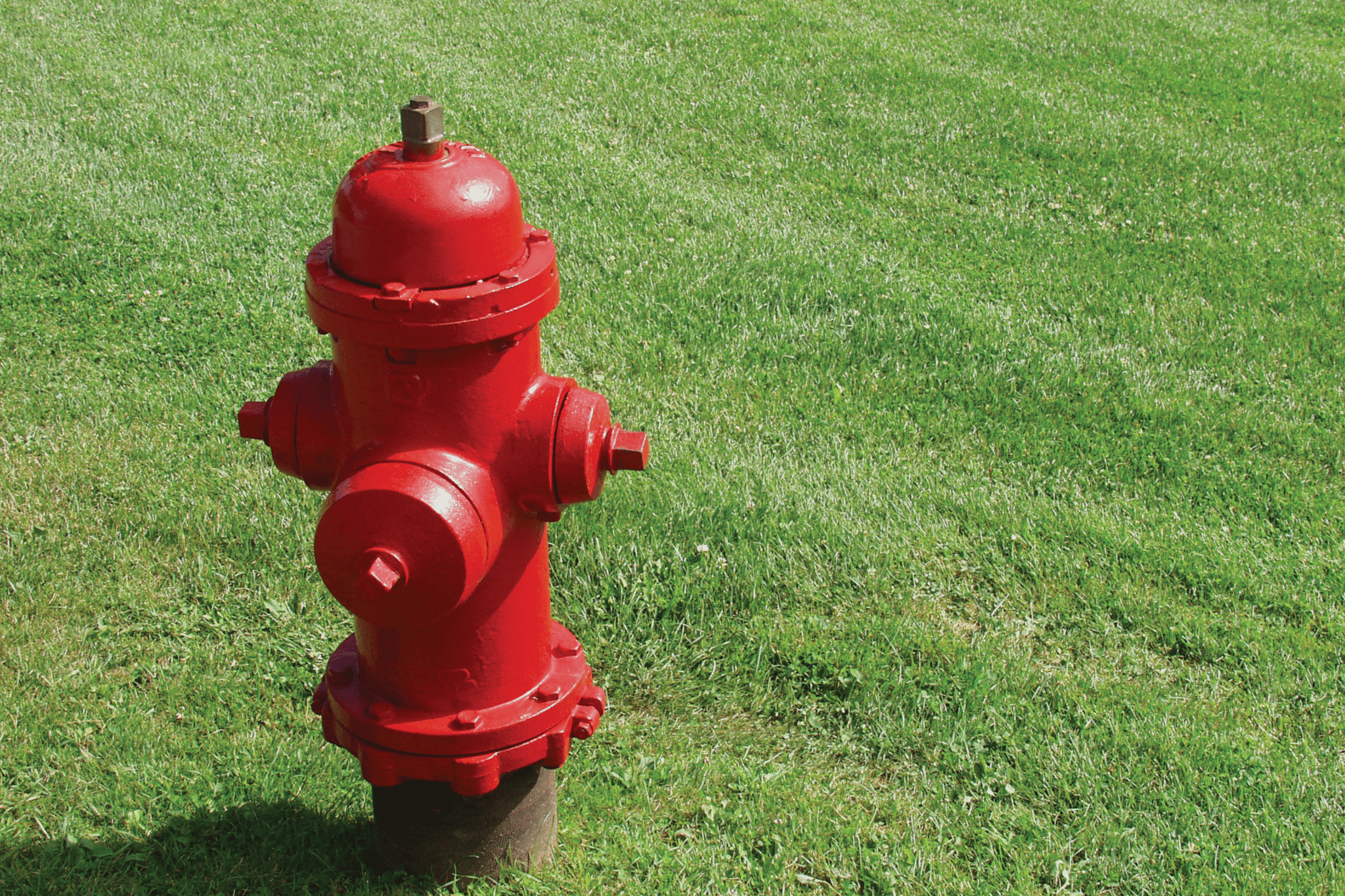 Red industrial fire hydrant in nicely manicured lawn
